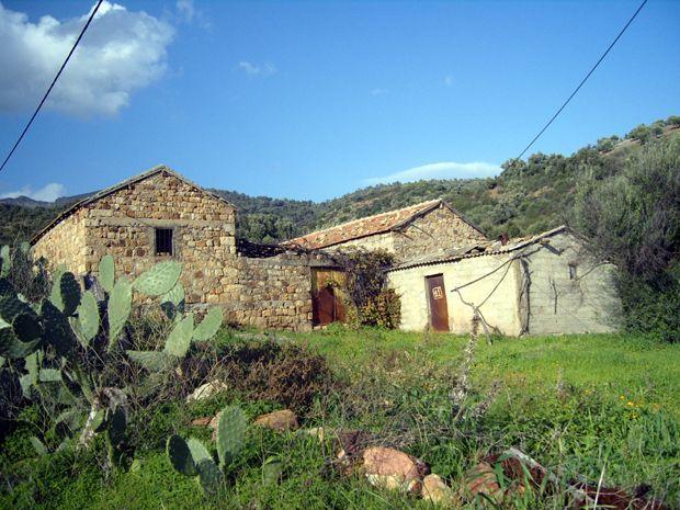 Une maison kabyle akhame lakbayel for Construire une maison kabyle